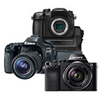 DSLR / Mirrorless Cameras
