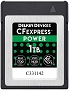Delkin Devices 1TB CFexpress POWER Memory Card